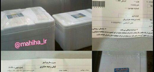 ارسال ماهی تازه جنوب به تهران و کرج